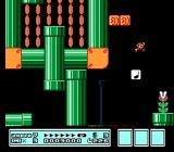 Super Mario Bros. 3 NES It's full of pipes