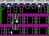 Bruce Lee ZX Spectrum Yamo and Ninja are here to stop you