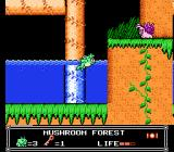Little Nemo: The Dream Master NES Little Nemo wearing a frog