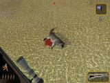 Deer Hunter 2004 Windows Raccoon (Demo)