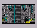 Batman: The Caped Crusader ZX Spectrum The game starts off with you sliding down the pole into the bat cave