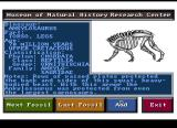 Designasaurus Amiga Build Dino - Choose a body.