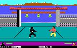 Ninja DOS Fighting an enemy (Tandy/PCjr)