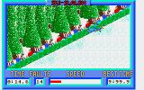 Winter Challenge: World Class Competition Amiga Slalom - Crashed!
