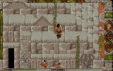 Conan: The Cimmerian DOS Breaking into an ancient temple.