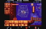 Black Tiger Amiga Caught in a spider's web ... NOT!