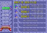 Sonic CD Windows The game allows up to six save files.