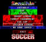 Championship Soccer '94 SNES Custom Teams menu.