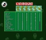 Virtual Soccer SNES League table.
