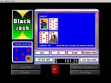 Casino! Windows 3.x Video blackjack.