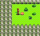 Dragon Crystal Game Gear Random forest location. Surrounded by enemies