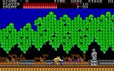 Castlevania DOS Improve your weapons (EGA)