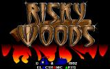Risky Woods DOS Title screen