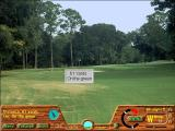 Picture Perfect Golf Windows 3.x Playing the game: Just made a neat chip onto the green