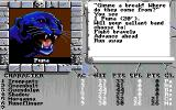 The Bard's Tale III: Thief of Fate Amiga Puma