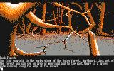 The Pawn Amstrad CPC In the dying forest