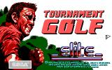 Arnold Palmer Tournament Golf DOS Second Title Screen.