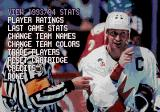 Wayne Gretzky and the NHLPA All-Stars Genesis View/Edit stats