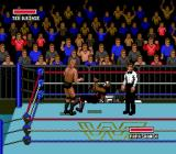 WWF Super WrestleMania Genesis Sorry, it wasn't on purpose
