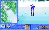 The Games: Winter Challenge DOS Ski Jump