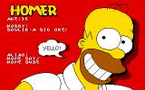 The Simpsons DOS Homer Information