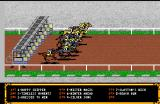 Omni-Play Horse Racing Amiga The race begins!