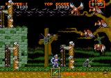 Ghouls 'N Ghosts Genesis birdies everywhere!!