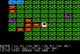 Fortress of the Witch King Apple II Searching the map for treasure.
