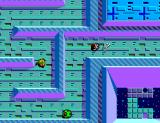 Maze Hunter 3-D SEGA Master System You must get this key to leave the level