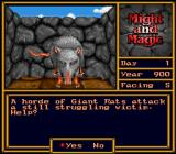 Might and Magic II: Gates to Another World SNES Stumbling over a bunch of rats