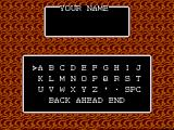 Miracle Warriors: Seal of the Dark Lord SEGA Master System Name Entry