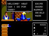 Miracle Warriors: Seal of the Dark Lord SEGA Master System In each town, you can buy weapons