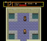 Neutopia TurboGrafx-16 Nice house!