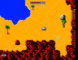 Golvellius: Valley of Doom SEGA Master System The beach
