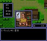 Cosmic Fantasy Stories SEGA CD Cosmic Fantasy: In inns and shops, you see nice animé-style pictures of the characters