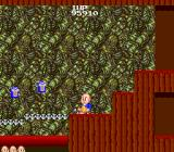 Bonze Adventure TurboGrafx-16 The cave