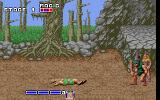 Golden Axe DOS In game shot