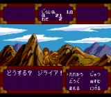 Tengai Makyō: Ziria TurboGrafx CD Battle in mountains