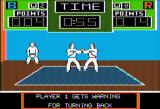 Black Belt Apple II Sparring