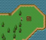 Far the Earth no Jakōtei: Neo Metal Fantasy TurboGrafx CD World map, near town