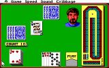 Hoyle: Official Book of Games - Volume 1 DOS Cribbage
