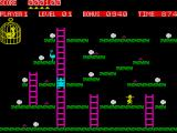 Chuckie Egg ZX Spectrum Collect twelve eggs to finish each level
