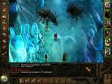 Icewind Dale: Heart of Winter Windows Ugly insects