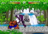 Brutal: Paws of Fury Genesis Kung-fu bunny's special move