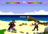 Brutal: Paws of Fury Genesis Fighting on the beach