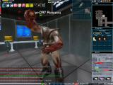 Anarchy Online Windows Fighting - 1st person view