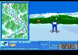 The Games: Winter Challenge Genesis Giant slalom