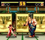 Fatal Fury 2 Genesis Another Japanese stage, this time with a tiger