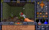 Ultima Underworld II: Labyrinth of Worlds DOS World 1: The Prison Tower. Outwit goblins.
