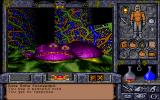 Ultima Underworld II: Labyrinth of Worlds DOS World 4: Talorus. Alien bio-tech complex.